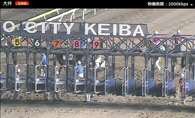 ゲート入りを映さない大井競馬のカメラ