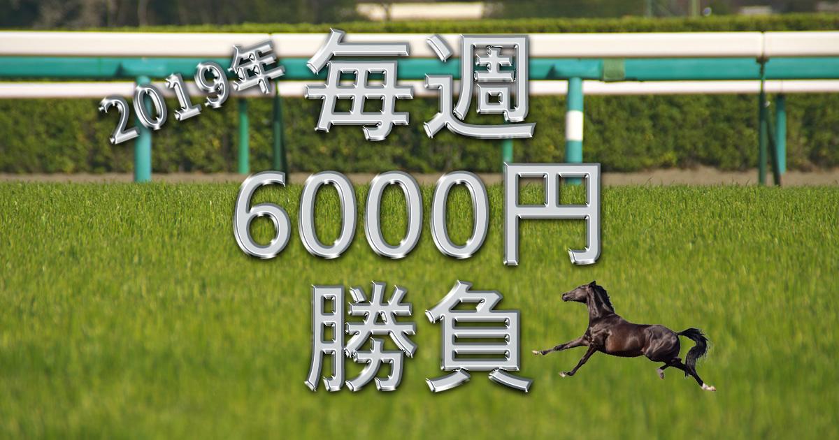 馬券6000円勝負2019